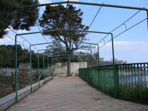 Giardino della villa Scotto di Pagliara.9