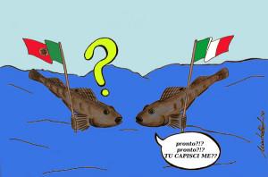 Ogni pesce parla la propria lingua.1