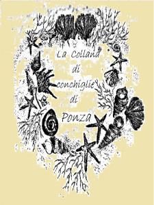 La collana di conchiglie di Ponza. Di LCP