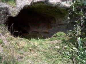 Necropoli del Bagno Vecchio liberata dai rovi copia
