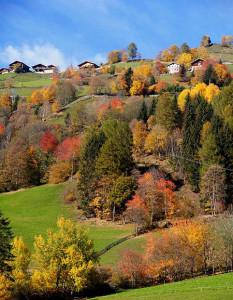 Masi dell'Alto Adige