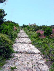 Zannone. Scalinata di pietra dal varo verso il monastero