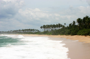 Beach west coast