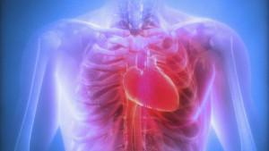 L'operazione al cuore