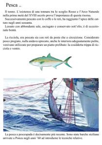 Pannello 7. Pesca II