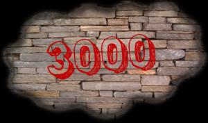 3000. Mattoni copia