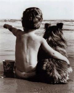 Cane spiaggia. Bambino