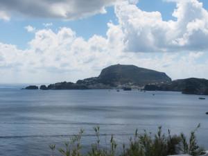 Da Punta Incenso veduta verso il porto
