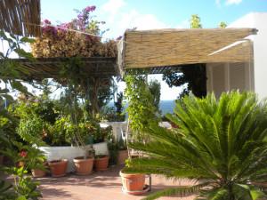 Il giardino di Ida