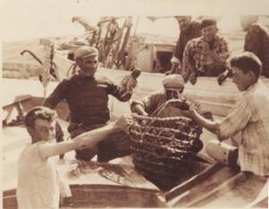 Pescatori di aragoste a La Galite