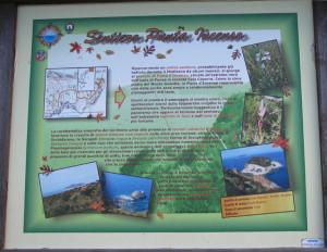 Sentiero Punta Incenso