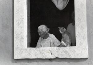 Vecchia signora con gatto