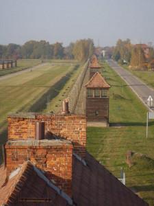 1. Birkenau landscape