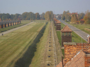 2. Birkenau