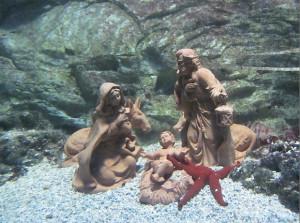 Presepe sottomarino dell'acquario di Cattolica