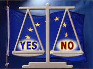 euro si euro no il dilemma