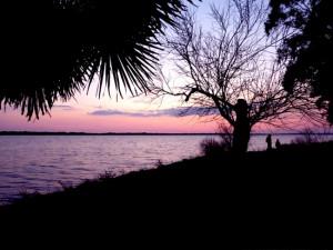 Cartolina al tramonto dal Lago di Fogliano (Lt)