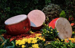 Drums.3