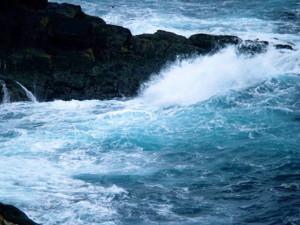 Mare.1