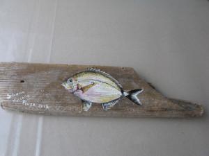 Silverio Mazzella. Pesce