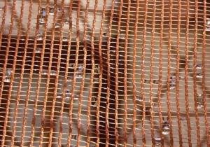 Warka water net