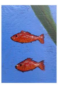 I pesci rossi di Miriam Vitale