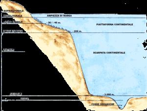 piattaforma continentale