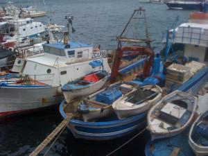 Barche da pesca a Ponza