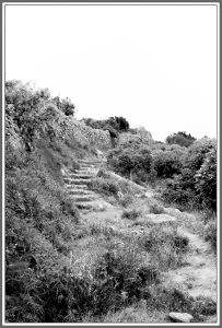 Verso-la-Guardia-203x300[1]