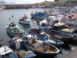 Barche da pesca ormeggiate allla banchina del porto