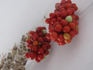 Pomodori e trecce d'aglio appesi
