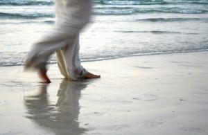 Shore walker.2