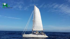 017 Navigando dal Giglio a Capraia