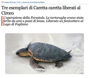Caretta. Radioluna.it. 2 ott.2014