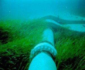 Collegamento sottomarino