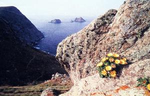 La Galite