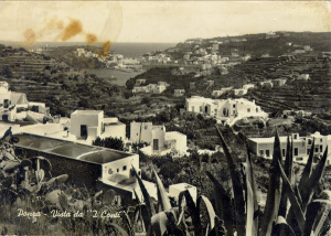 Panorama-dei-Conti-con-lo-sfondo-del-porto.-in-primo-piano-il-tetto-della-casa-di-mia-nonna