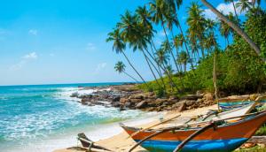 Sri Lanka. Imbarcazioni tipiche su una spiaggia