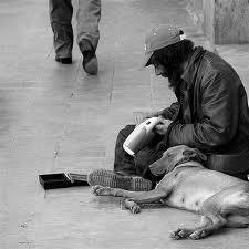 cane e barnone 1