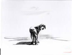 cane solitario