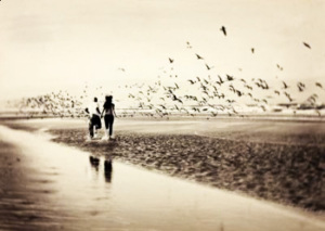 Amore. Mare.2