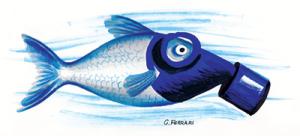 Desalinizzatore.3. Pesce
