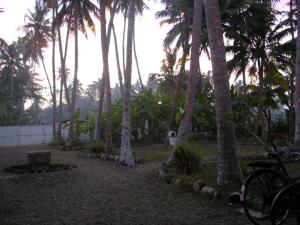 Garden Sri-Lanka