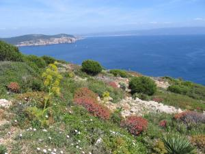 Capo Caccia. Sardegna Nature