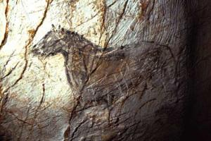 Graffiti grotta Cosquer. Cheval noir