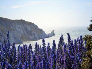 Isle of Wight.2