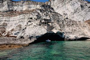 Punta Vardella. Il nido del gabbiano