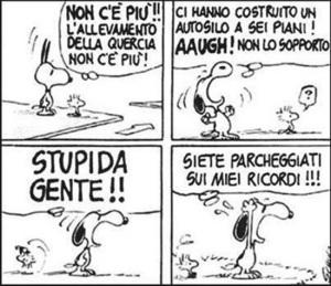 Snoopy. Ricordi