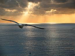 l'anima che vola al cielo