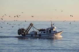 peschereccio al rientro